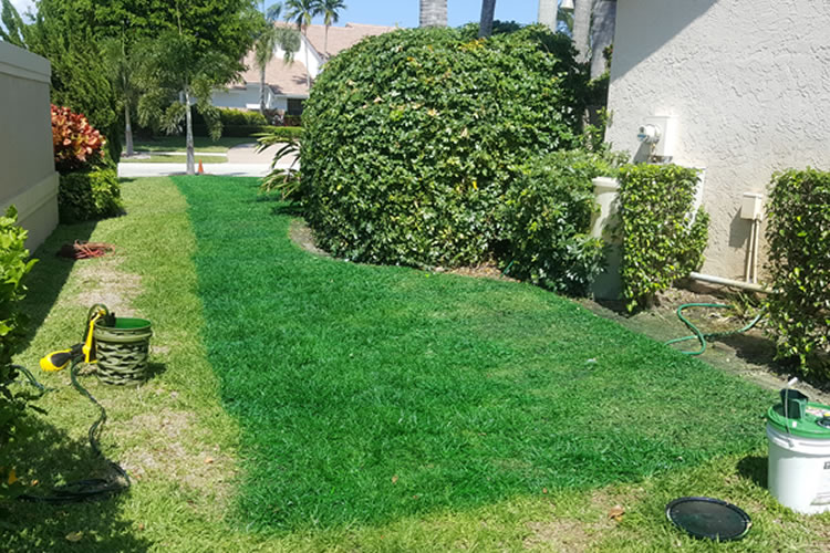 turf-installation-commercial-residential