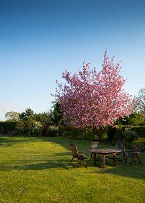relaxation garden grass spring 287x400 Landscape Design: Cost Factors