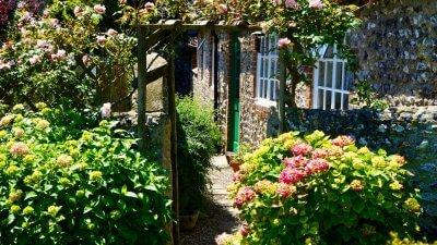 backyard plants 400x225 How to Landscape Design Backyard